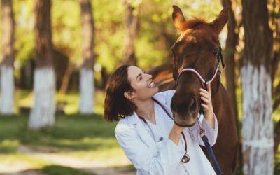 Akuter, chronischer und allergischer Husten